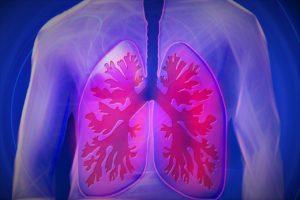 rappresentazione sistema polmonare osteopatia trattamento patologie respiratorie